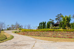 Garden countryside. A photo of the countryside in Thailand Stock Images