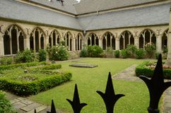Garden, Courtyard, Grass, Plant royalty free stock images