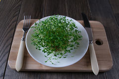 Garden cress on white plate with fork and knife. Fresh herbs. Royalty Free Stock Photography
