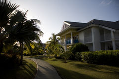 Garden in cuba. With palm trees over big houses Stock Photography