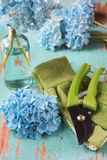 Garden cutters and gloves Stock Images