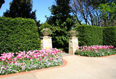Garden in Dallas Arboretum royalty free stock images