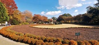 Garden in Dallas Arboretum