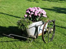 Garden decor in old wagon Stock Image