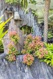 Garden Decorate Stock Photo