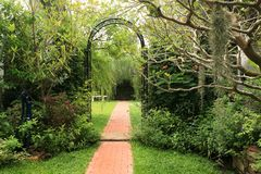 Garden. In the garden decorated with arches look interesting Stock Photos