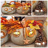Garden decoration for autumn royalty free stock image