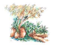 Garden decoration pot illustration hand drawn Royalty Free Stock Image
