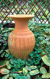 Garden decoration by pottery jar, pottery pitcher Royalty Free Stock Images
