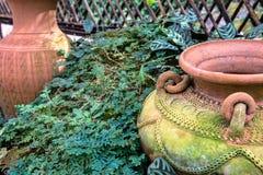 Garden decoration by pottery jar, pottery pitcher Royalty Free Stock Photos