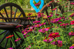 Garden decoration. In rural style stock photo