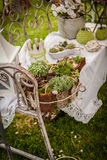 Garden decoration shabby chic style Stock Image