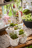 Garden decoration shabby chic style Stock Photos