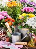 Garden decoration Stock Photos