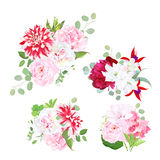 Garden delicate bouquets vector design objects. Pink roses, white freesia, burgundy red peony, hydrangea, posh motley dahlia, red fuchsia, eucalyptus. All Royalty Free Stock Photography