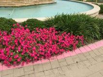 Garden design around water fountain Royalty Free Stock Images
