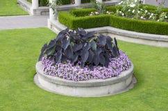 Garden design Stock Photography