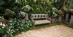 Garden design, flower,tree Wooden bench in the city park royalty free stock photo