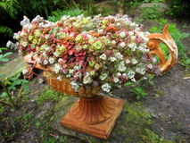 Garden antique design Royalty Free Stock Photography