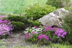 Garden Design with Rocks and Flowers (3). Garden Ornamental Design with Rocks and Blooming Flowers Royalty Free Stock Image