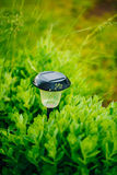 Garden Design. Solar Powered Lamp. Small Solar Stock Images
