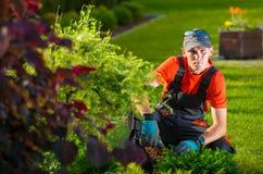 The Garden Designer Stock Images