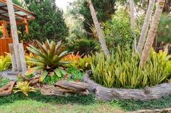 Garden  designs Royalty Free Stock Photos