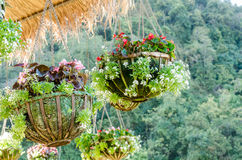 Garden designs with hanging flower pot Royalty Free Stock Images