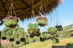 Garden designs with hanging flower pot Stock Photography