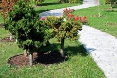 Garden detail Stock Image