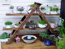 Garden Display Royalty Free Stock Image