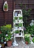 Garden Display Stock Photo