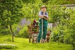 Garden Dog hat standing gardener Royalty Free Stock Images