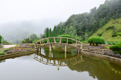 Garden in Doi Inthanon National Park Stock Photography