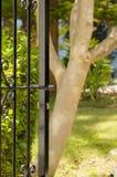 Garden door Stock Photo