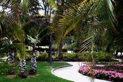 Garden Doramas. A view at the Garden Doramas from the trees. Las Palmas, Gran Canaria Royalty Free Stock Photos