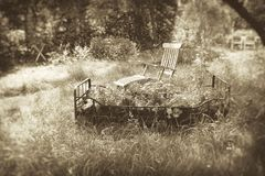 Garden dream in sepia Royalty Free Stock Images
