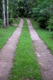Garden drive lane. Green garden drive lane on grass Stock Images