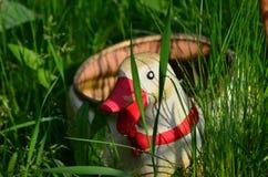 Garden duck pot Royalty Free Stock Photo