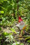 Garden Dwarf Royalty Free Stock Photos