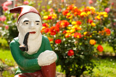 Garden dwarf. Garden dwarf with garden full of roses in the background Royalty Free Stock Photos