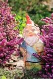 Garden Dwarf holding a shovel and pumpkin. Garden Dwarf between flowers holding a shovel and pumpkin Stock Photos