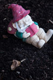 Garden dwarf. Reading a book royalty free stock images