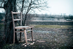 The garden in early spring and wooden chair. Rustic style Royalty Free Stock Image