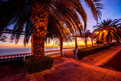 Garden on the eastern coast of La Palma island Royalty Free Stock Image