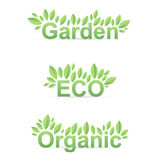 Garden ECO Organic sign with green leafs Stock Photo