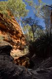 Garden of Edem. Green oasis Garden of Edem in Kings Canyon. Kings Canyon - the most ancient canyon on Earth 300m deep. Australia Royalty Free Stock Photography