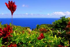 Garden Of Eden, Maui Hawaii Stock Photos