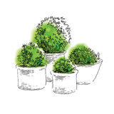 Garden elements sketch Royalty Free Stock Images