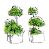 Garden elements sketch Stock Photos